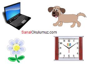 laptop köpek çiçek saat